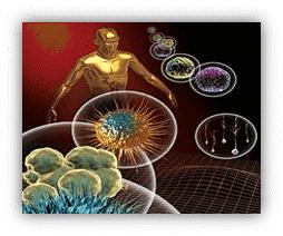 Autoimmune Specialist Florida | Autoimmune Doctor Miami